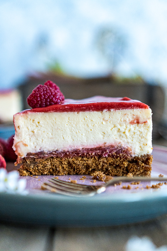 rhabarber-cheesecake-013
