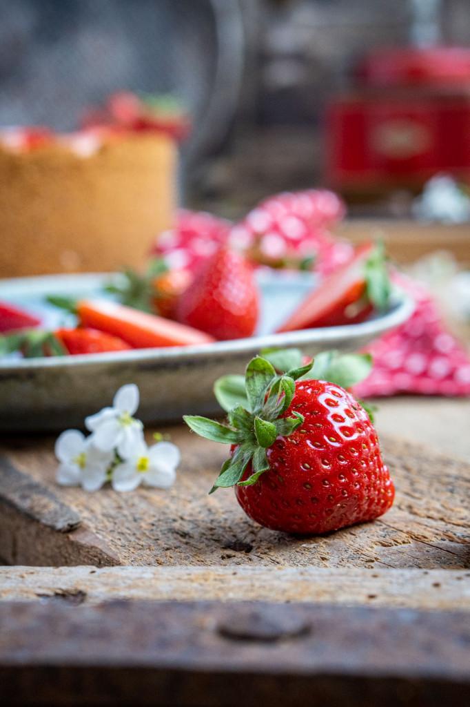erdbeer-käsekuchen-015