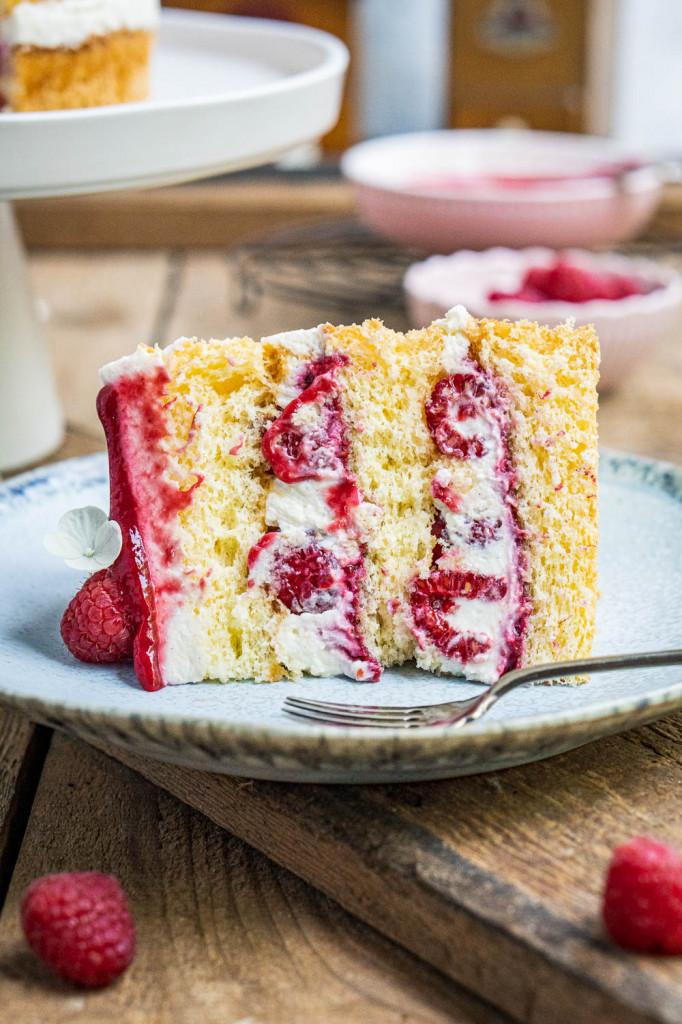 himbeer-joghurt-torte-037