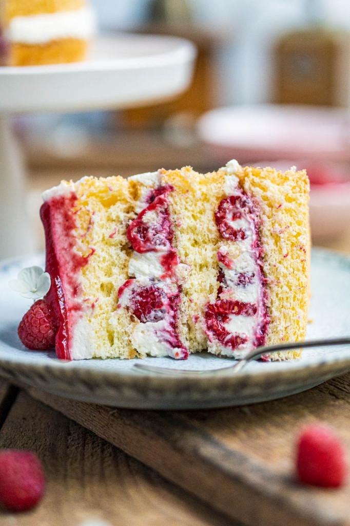 himbeer-joghurt-torte-043