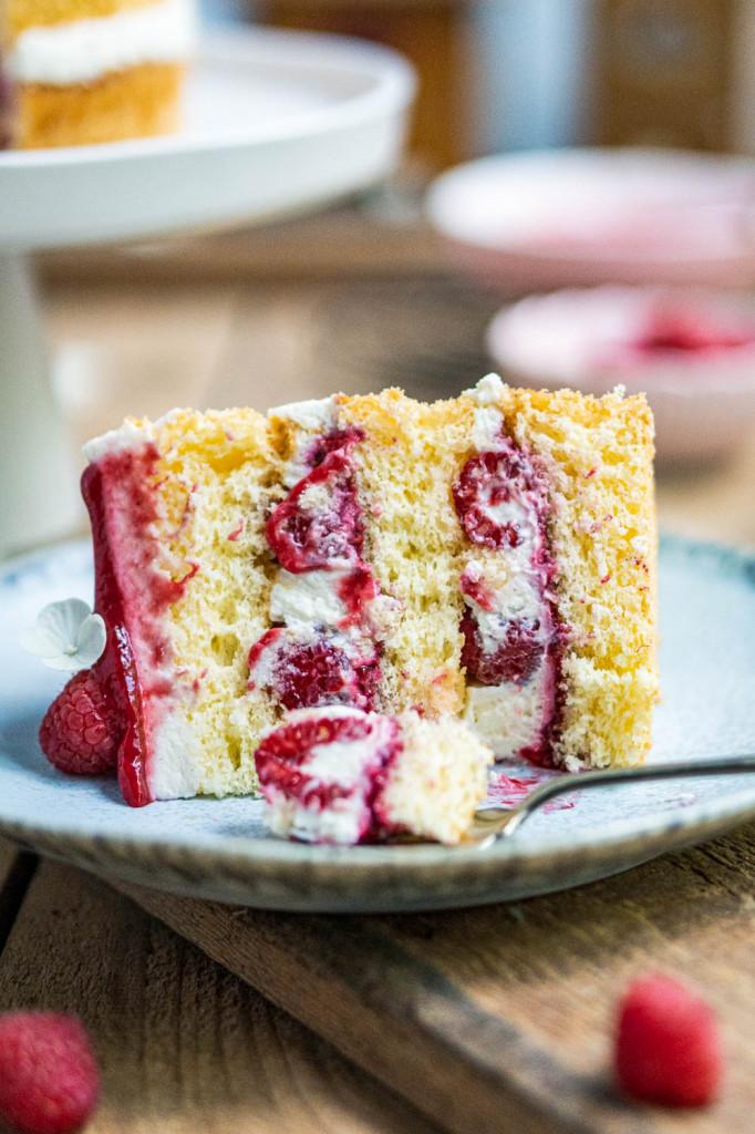 himbeer-joghurt-torte-047